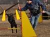 kutyagyerek_agility3