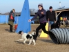 kutyagyerek_agility6