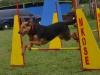 kutyagyerek_agility7