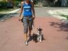 kutyakikepzea_kutyakikepzo_csaladi_kutya_kistestu_kutya32