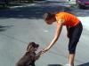 kutyakikepzes_kutyakikepzo_csaladi_kutya_kutyas_trukkok25